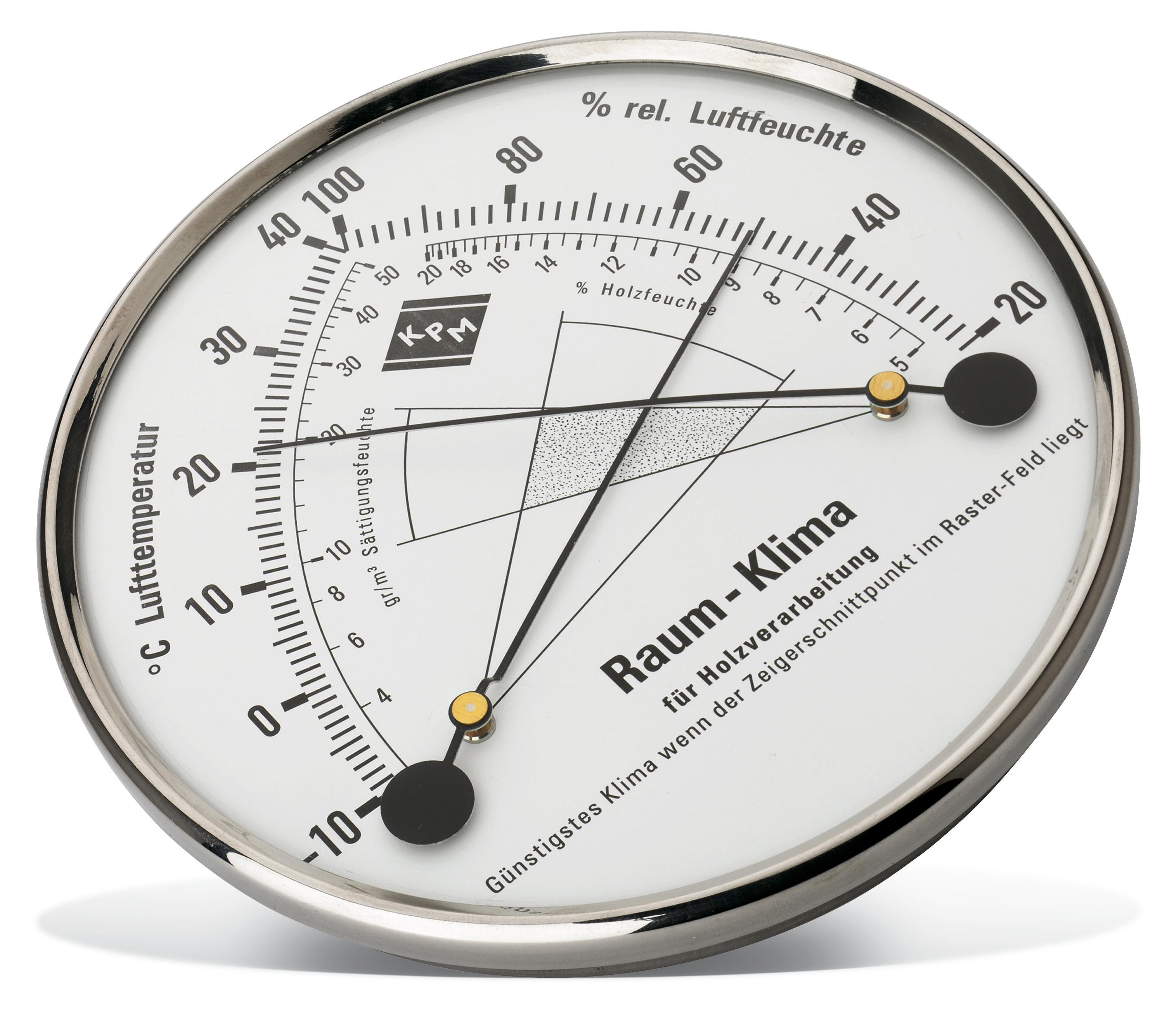 Thermo-Hygrometer TH100 Pajarito