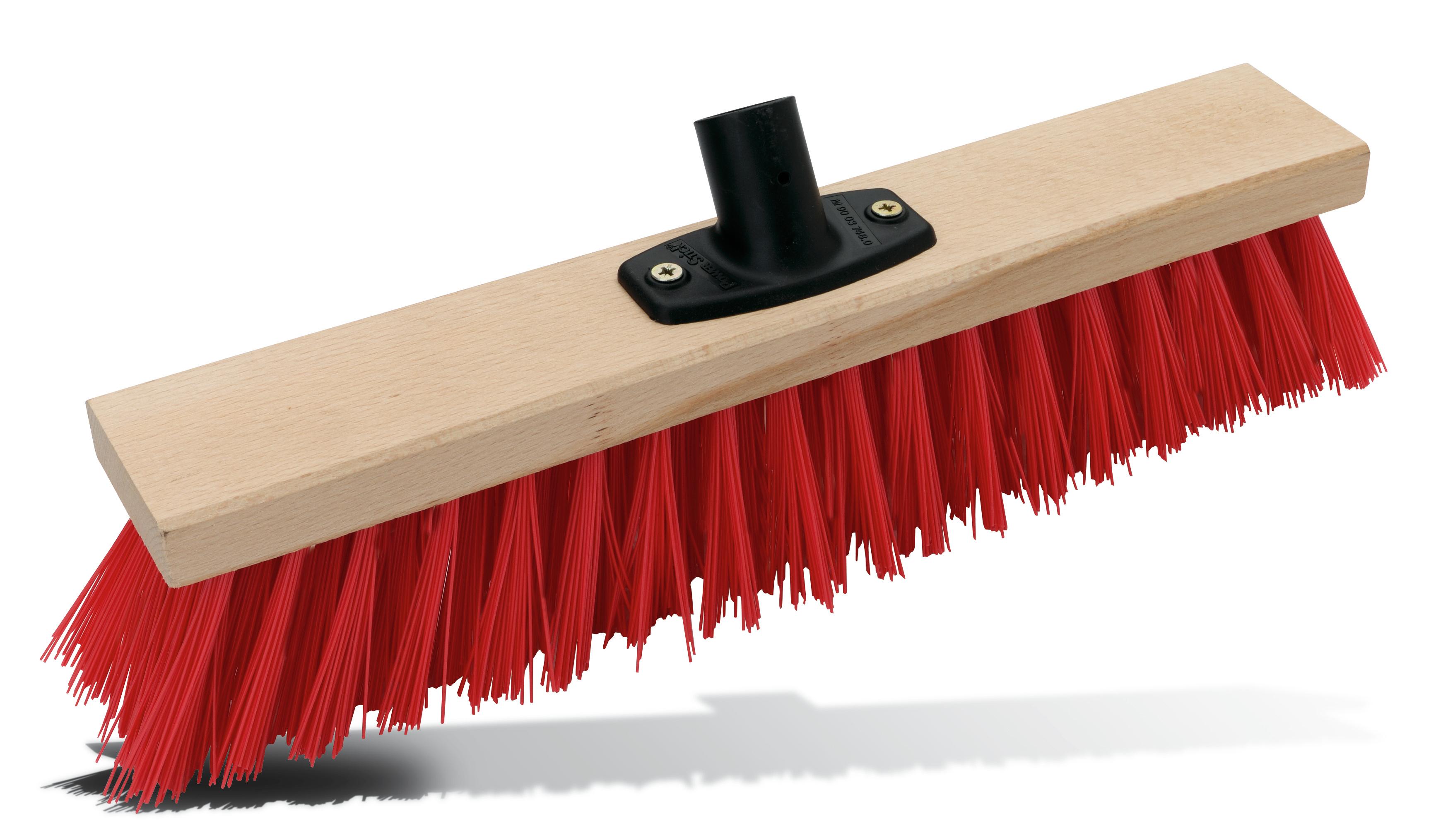 Coarse broom Pajarito